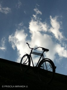 la bicicleta azul(1)